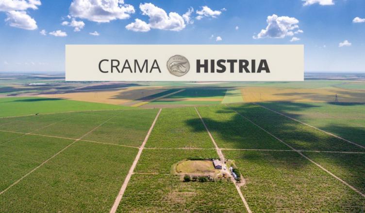 VinulRo_Crama_Histria_vedere_aeriana-752x440